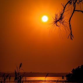Budgewoi sunset by David Spillane - Landscapes Sunsets & Sunrises