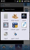 Screenshot of small accountant