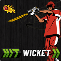 Hit Wicket Cricket - World icon