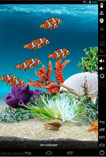 Hồ cá Nemo Hình nền động