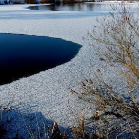 Frozen Lake by Nat Bolfan-Stosic - Landscapes Waterscapes ( willage, winter, fish, lake, frozen )