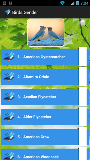 鳥類性別|玩娛樂App免費|玩APPs