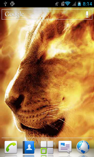 Lioness in Flame a live