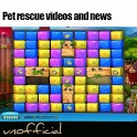 pet rescue videos and news icon