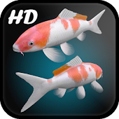 Aquarium Live Wallpaper 3D