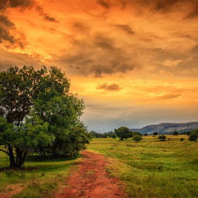 The land of Green and Gold by Hans-Erik Arp - Landscapes Sunsets & Sunrises ( savannah, mountains, sky, african, afternoon, sunset, south africa, stormsignal, trees, summer, travel, africa )