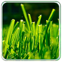 Galaxy S5 Green Theme HD icon
