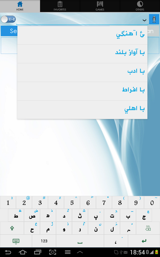 Urdu Dictionary- screenshot