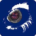 N_eye