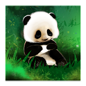 Sleepy Panda Live Wallpaper