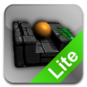 Spin the Maze Lite icon