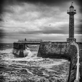 Whitby Pier by John Ash - Black & White Landscapes ( black and white, waves, lighthouse, whitby, wall )