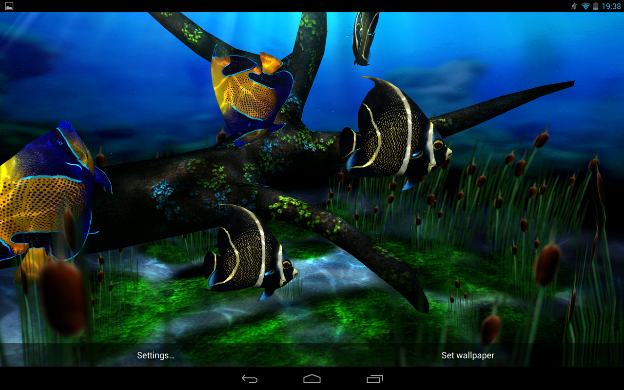 Download My 3d Fish Ii Apk Latest Version App For Android Devices