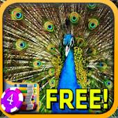 Peacock Slots - Free
