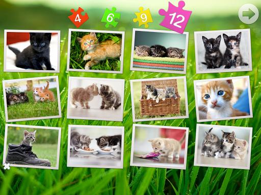 猫和小猫 - 拼图
