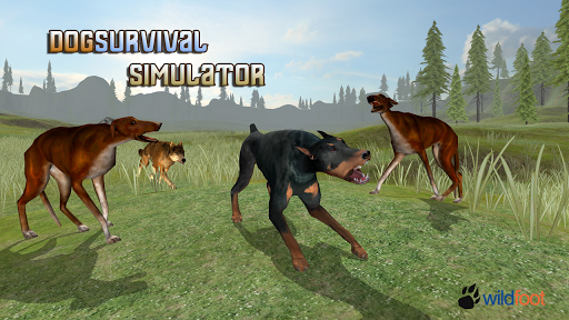 Dog Survival Simulator