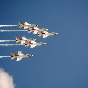 Thunderbirds all  by Heather Donahue - Transportation Airplanes