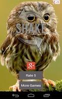 Screenshot of Owl Sound Bird Sounds