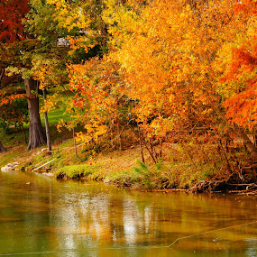 Fly Fishing On The Guadalupe River, Comal county, Texas by Scott Walker - Landscapes Waterscapes ( guadalupe, peace, autumn colors, fly fishing, river )