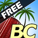 Beach Cricket logo