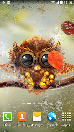 Autumn Little Owl Wallpaper