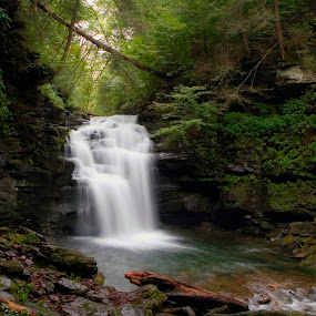 Big Falls in September Rain by Gene Walls - Landscapes Forests ( wilderness, stream, nature, spillway, pa, state game lands 13, big falls, creek, falls, waterfall, pennsylvania, heberly run,  )