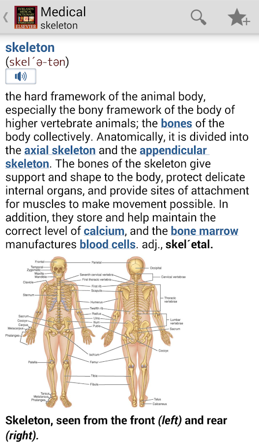 Dorland's Medical DictionaryTR- screenshot