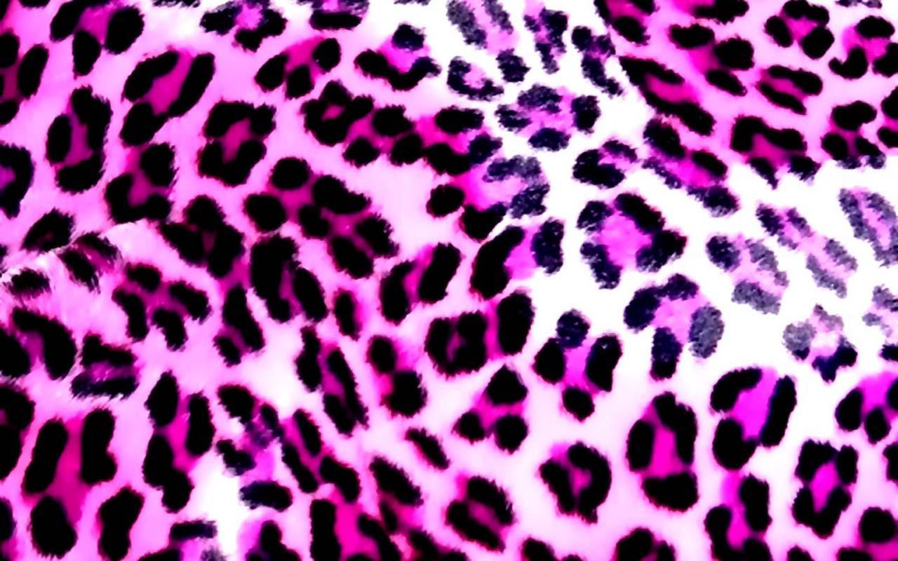 Google themes leopard - Screenshots