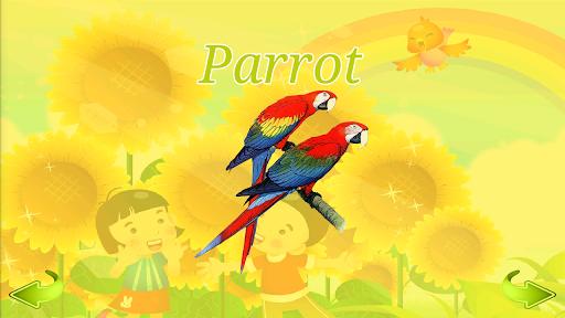 Learn Birds