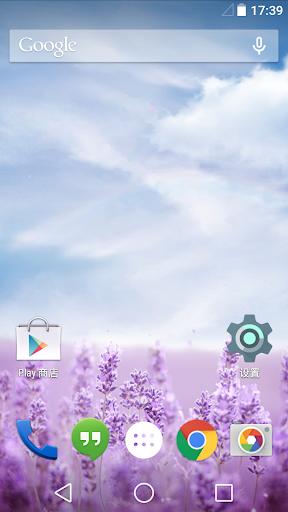 Purple Lavender Live Wallpaper