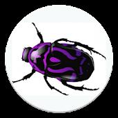News Bug - PRO