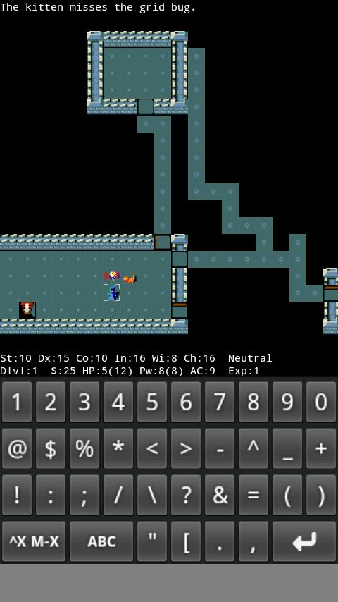 NetHack - screenshot
