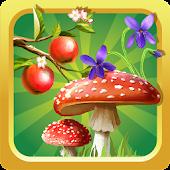 Forest Plants encyclopedia