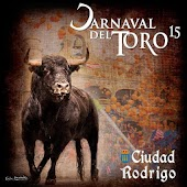 Carnaval del Toro 2015