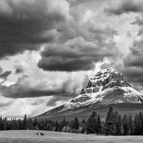 Crowsnest Mountain by William Tipper - Black & White Landscapes ( black and white, b&w, landscape )