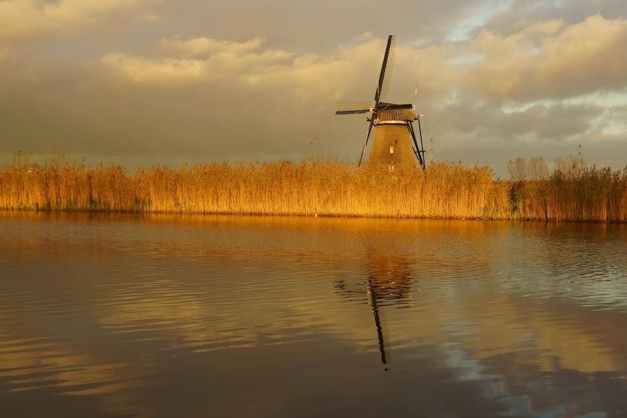 Holland by Michel Van Kooten - Landscapes Waterscapes ( sloot, kinderdijk, holland, alblasserwaard, molenwaard, canal, netherlands, windmill )
