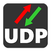 UDP RECEIVE and SEND