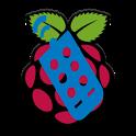 Raspberry Pi Remote Control icon