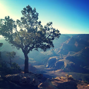 Grand Canyon by Patrick Cloutier - Landscapes Mountains & Hills