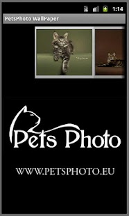Pet Photo WallPaper - screenshot thumbnail