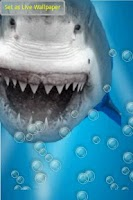 Screenshot of Angry Shark Under Water Waves