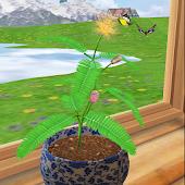 3D Mimosa Live Wallpaper Free