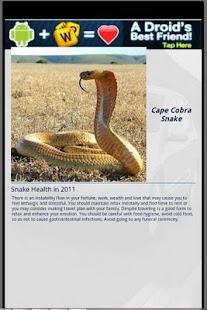玩休閒App|Snake & Me免費|APP試玩