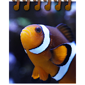 Nativnux Aquarium Logger Pro