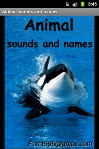Joey4Kids: Animals Free