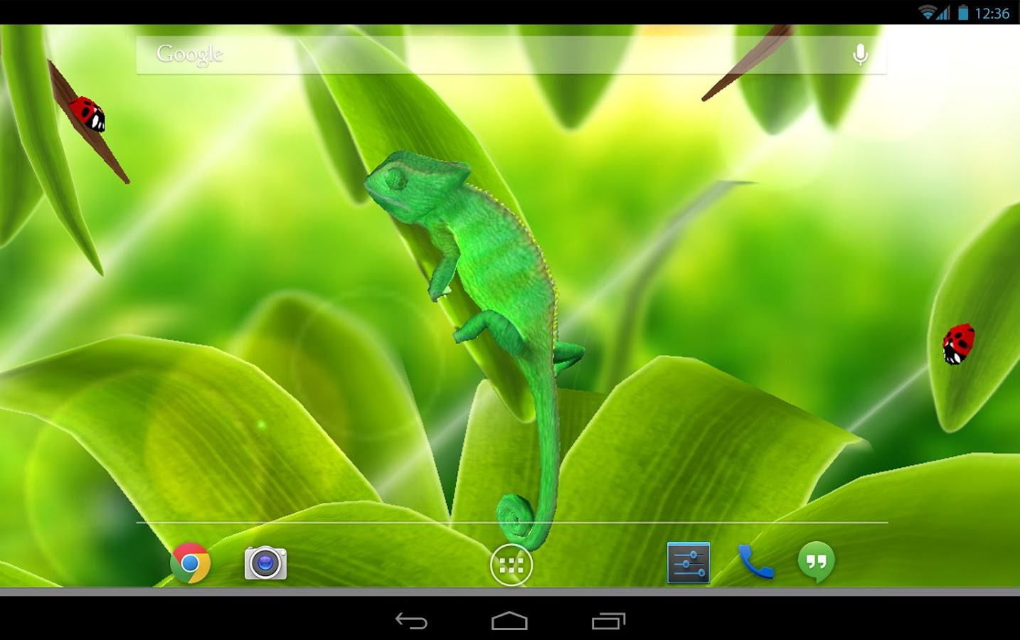 chameleon 3d live wallpaper - android apps on google play