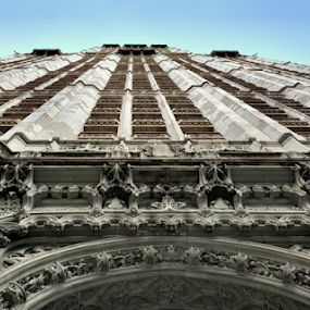 The Woolworth Building, NYC by Rita Uriel - Buildings & Architecture Public & Historical ( sky, skyscraper, arch, buildings, manhattan, architecture, historical, nyc )