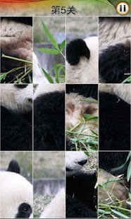 Panda puzzle - screenshot thumbnail