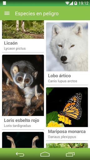 Especies en peligro