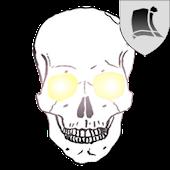 SkullWallpaper